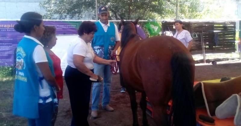 Ayuda DIF Morelos a adultos mayores con sesiones de equinoterapia
