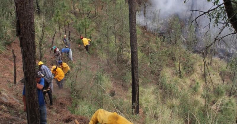 Atiende SDS cuatro incendios forestales