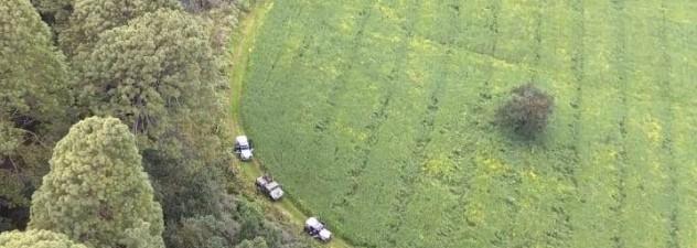 Implementan CES y SEDENA operativos en bosques de Tlalnepantla