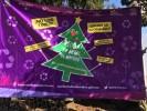 En funcionamiento centros para acopio de árboles de Navidad