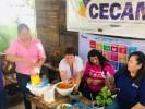 Capacita Upemor a mujeres sobre huertos urbanos
