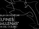 Cine bajo las estrellas en el Museo Juan Soriano
