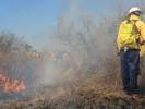 Pide SDS redoblar esfuerzos para prevenir incendios