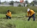 Realizan trabajos preventivos para evitar incendios en el Ejido de Acapantzingo