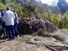 Ubican y destruyen horno de carbón en Tlalnepantla